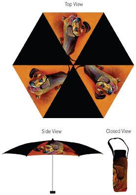 lg-umbrella.jpg